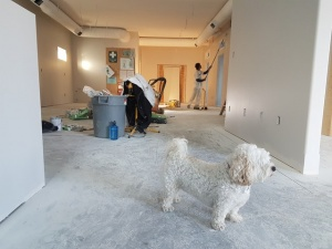 Charlotte remodeling contractor